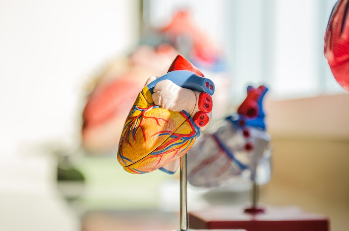 Discovery of Novel Markers of Inflammation for Earlier Diagnosis of Heart Disease