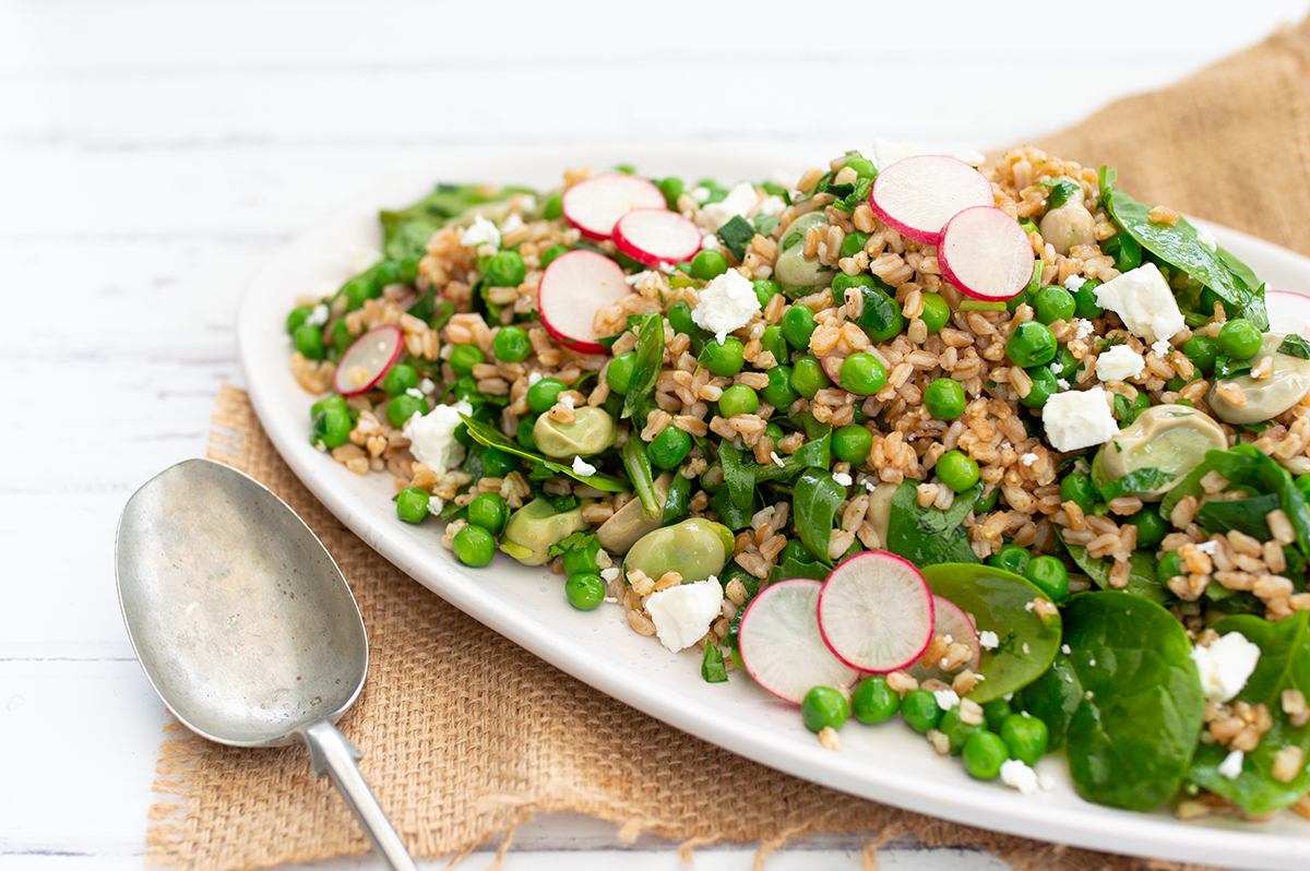 Farro with broad bean & pea salad